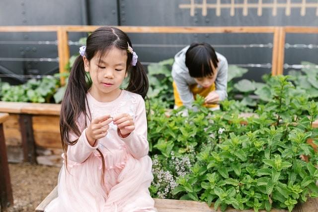 ילדה משחקת בשיער ומאחוריה ילד משחק בצמחים